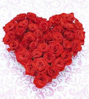San-Valentino-fiori