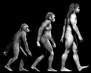 Dibattito Creazionismo Evoluzionismo: un eterno conflitto?