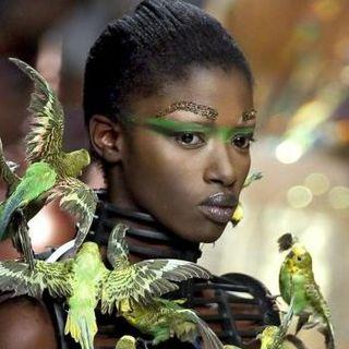 Paris Fashion Week S/S 2012 - Manish Arora