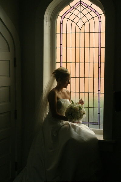 399px-Bride_north_america