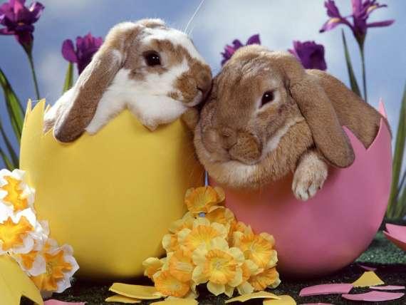 Poesie di Pasqua per i bambini di Gianni Rodari