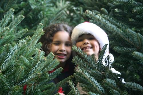 Natale 2013 eventi per bambini in Emilia Romagna e Campania
